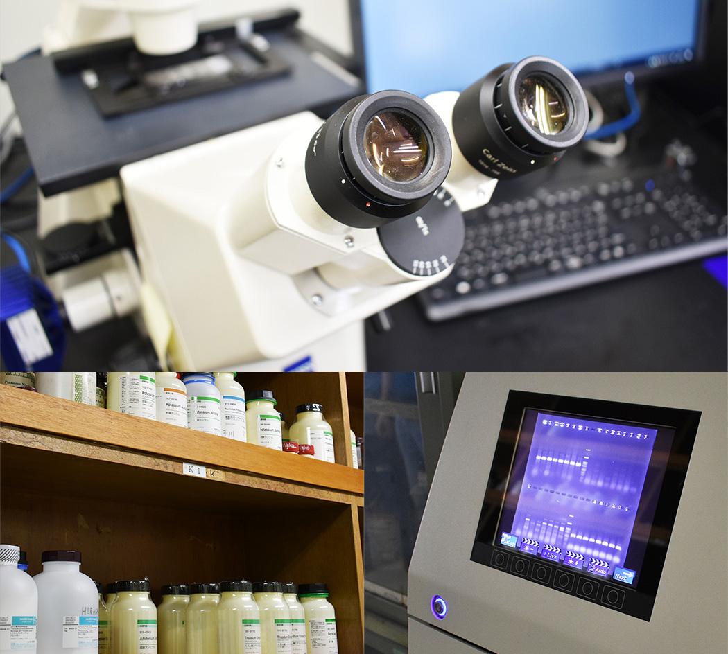 薬剤耐性菌実験施設